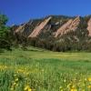Boulder's green season: photos by Ann Duncan
