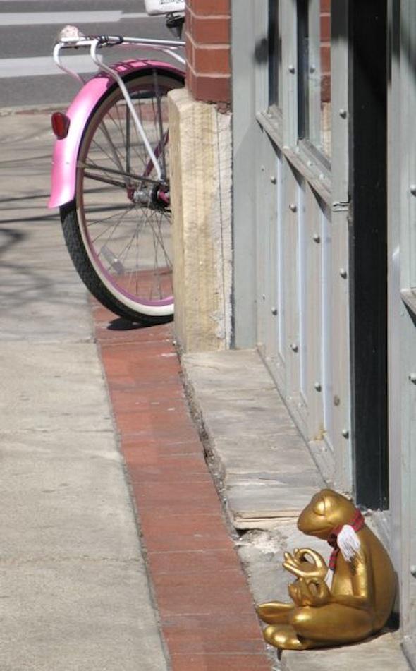 Meditating frog and cruiser bike ...